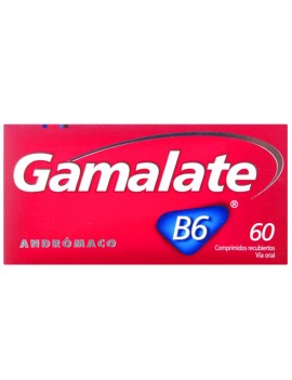 GAMALATE B6 GRA X 60 | AraucoMed Farmacia Online