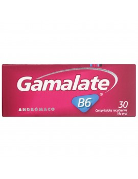 GAMALATE B6 GRA X 30 | AraucoMed Farmacia Online