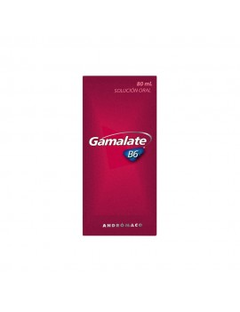 GAMALATE B6 JARABE 80ML